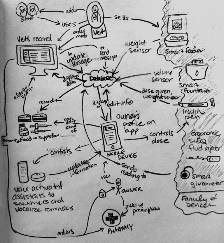 Diagrammatic sketch of Pet2Vet service