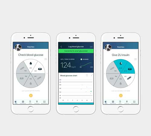 Three Pet2Vet app screens shown on a phone